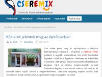 cseremix-orfalvy-arpad-ablakcsere-program